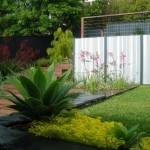 Landscaping ideas, northern beaches